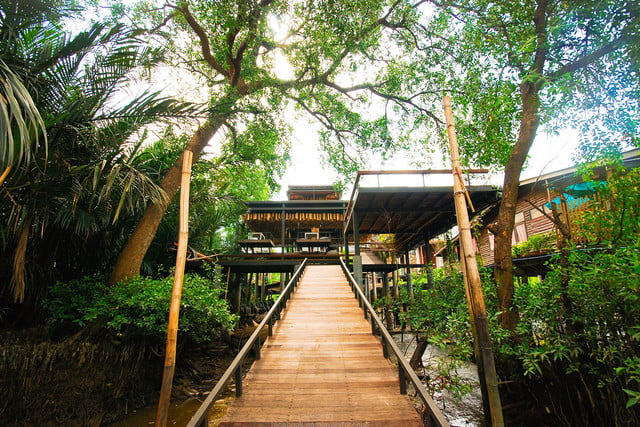 the bangkok tree house hotel lets guests sleep under stars resort 004