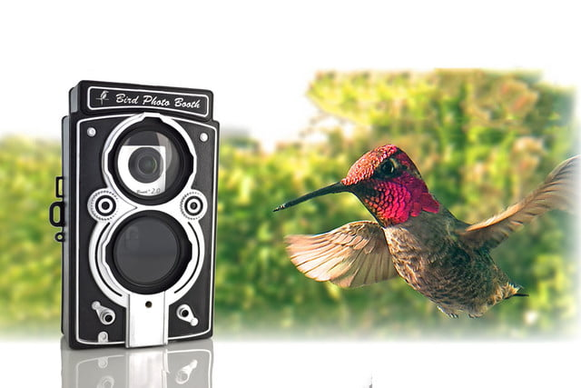 awesome tech you cant buy yet basslet edo cascadia bird photo booth 2 0  motion activated feeder camera