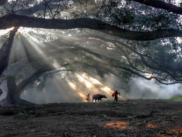 2016 International iPhone Photography Awards - Travel - First Place - Fugen Xiao