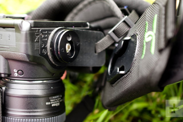 The quick release lot that holds the camera on the Cotton Carrier StrapShot