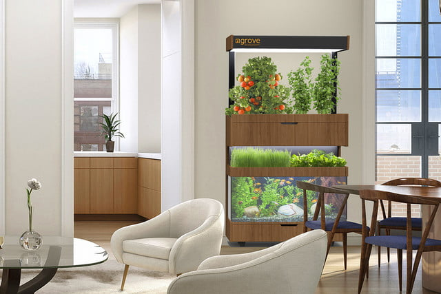the grove ecosystem launches a kickstarter for its indoor garden render in home