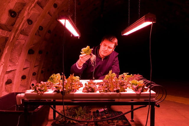 tech predictions for 2016 indoor farming