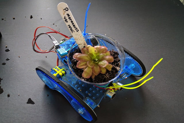 new crowdfunding projects Plantoid organic robot