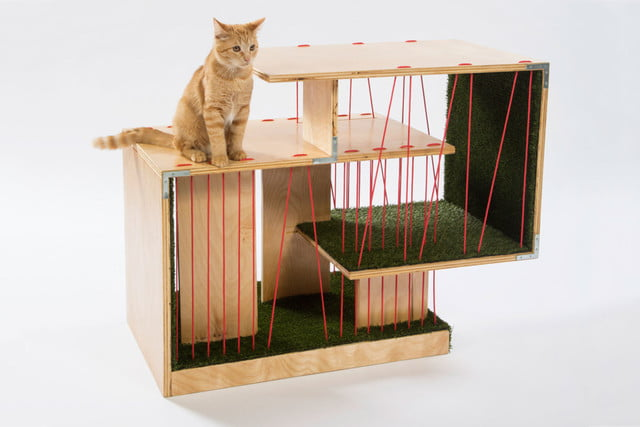 architects for animals design amazing cat houses rnldesign photo credit meghan bob photography