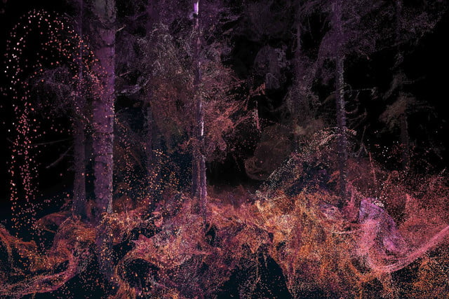 vr forest unspecified5
