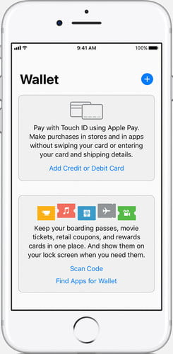 How To Use Apple Pay for All of Your Online and In-Store