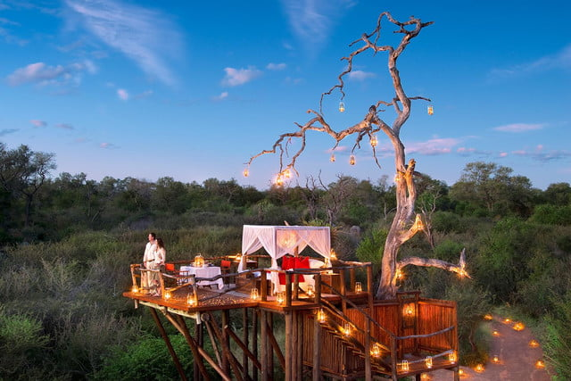 retreat from society and relax in these idyllic cabins around the world lion sands game reserve 2