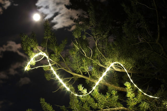 the luminoodle is a portable led light strip hero in tree