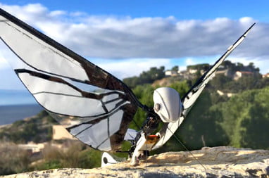 Insect-Inspired Robot Uses Wings to Fly Like a Drone