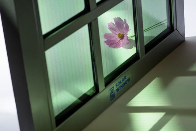 solar windows 50 times more effective pink flower sw