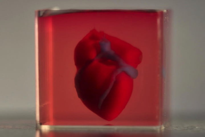 Scientists manage to 3D print an actual heart using human cells