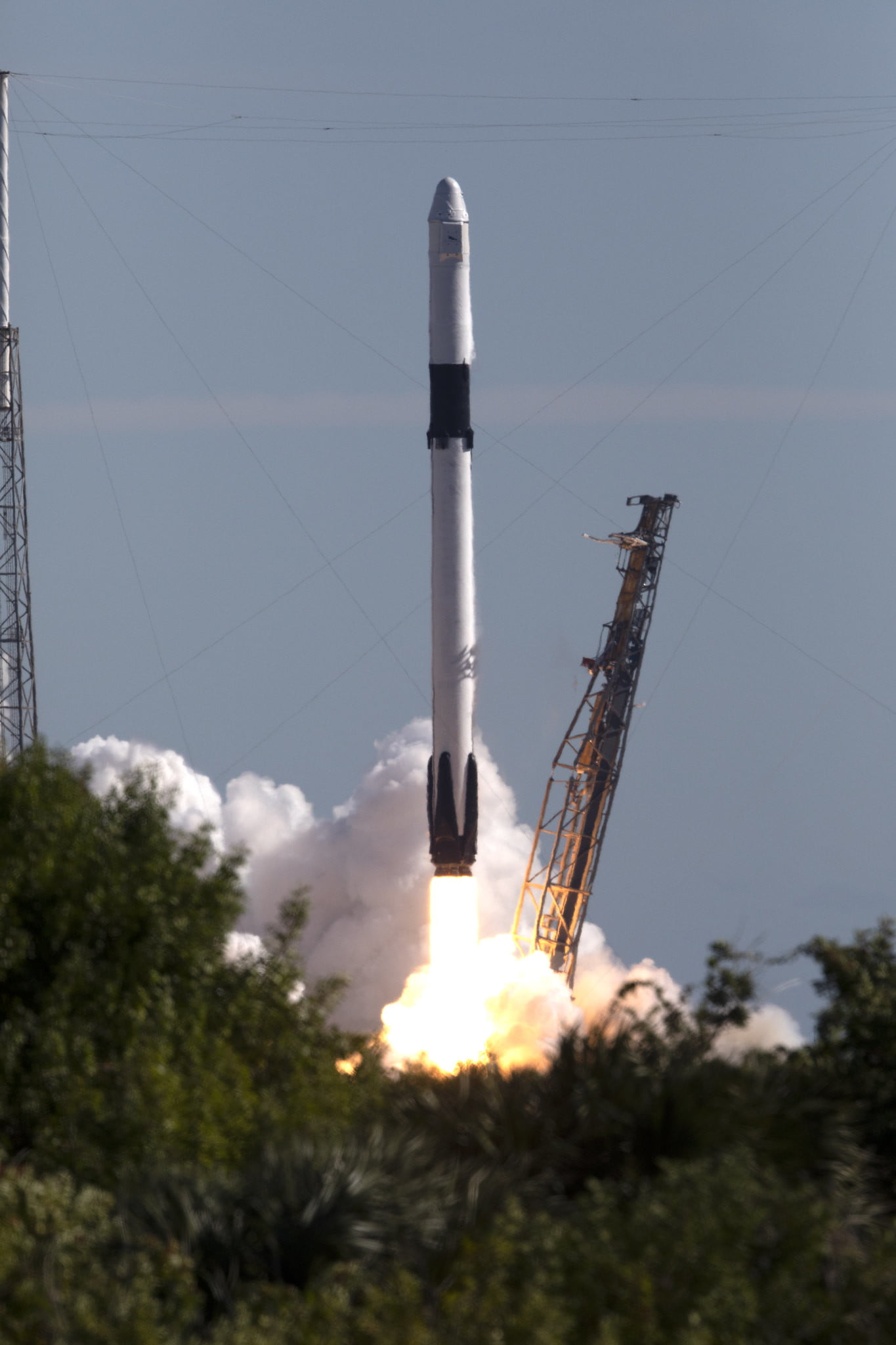 spacex may be launching next - HD1365×2048